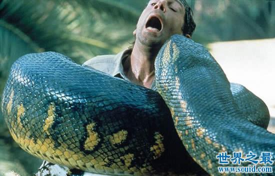 世界上最大的动物长80米,盘点20个巨型恐怖动物