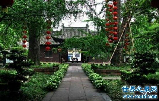 中国最美的十大长寿村排行榜,百岁老人一抓一大把!