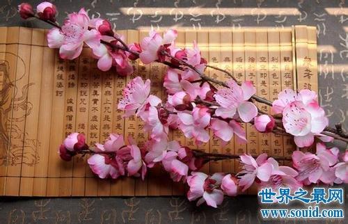 世界上最美的花排名,有一种花极其罕见。
