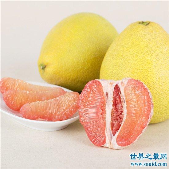 十大冬季养生水果排行榜,苹果的养生效果竟然这么好!